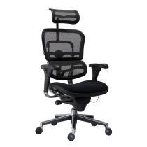 Kancelářská židle (křeslo) s područkami ERGOHUMAN (síťový opěrák)